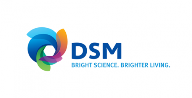 DSM expands Digimat-AM solution