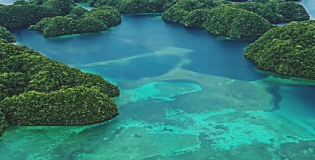 island nation palau enforce ban reef toxic sunscreens