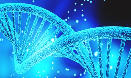 Attis partners with Novozymes to provide biotechnology support